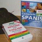 Do I Need to Learn the Language II
