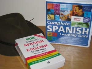Do I Need to Learn the Language II