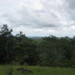 Finca for sale about 13 miles from Las Tablas, Panama