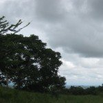 Ocean view from property near Las Tablas, Panama