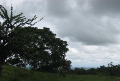 Ocean view from property near Las Tablas, Panama