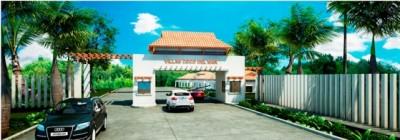 Coco del Mar entrance drawing