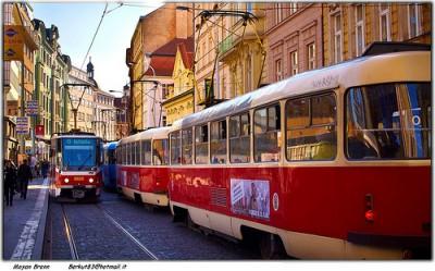 trams in Prague
