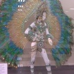 Carnaval Costume Display